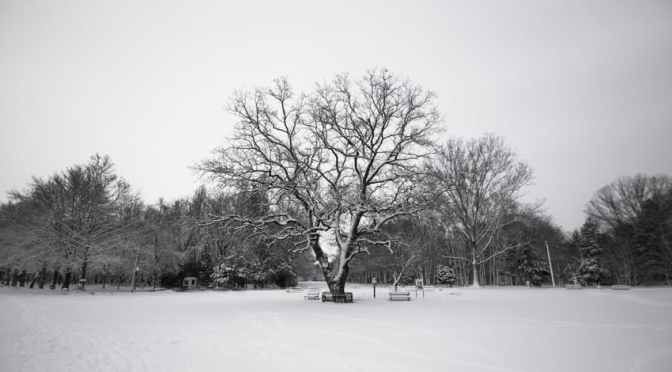 Tips to Fight Winter Depression